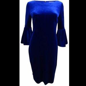 Velvet, bell sleeve dress